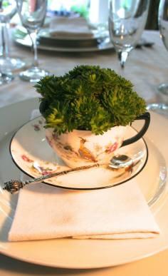 diy wedding flowers planted centerpiece